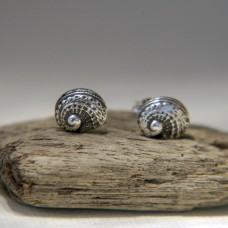Silver Abalone Stud Earrings