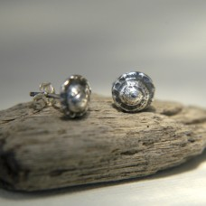 The 'Gnarly Little Number' Silver Shell Studs