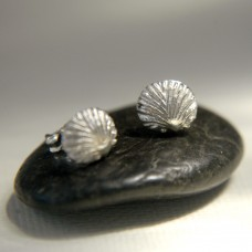 Ridged Scallop Shell Studs