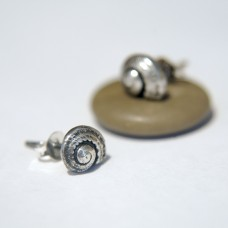 Silver Stud Earrings - Turbot Shell